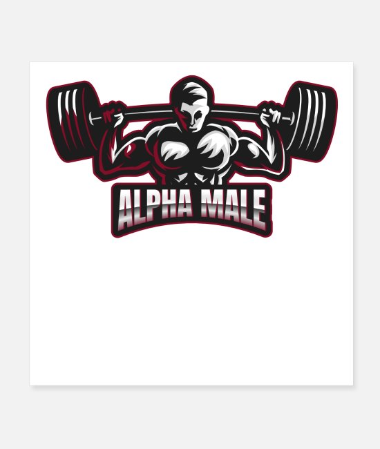 Training Posters - Alpha Male Fitness Barbell Graphic - Posters white
