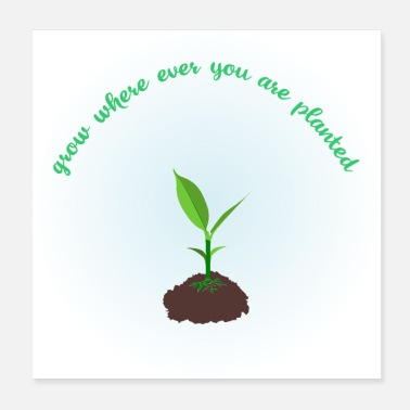 Startup grow where ever you are planted - Poster