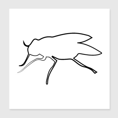 Fly - Poster 8x8