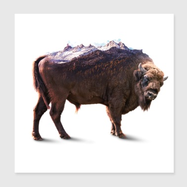 Bisons rock - Poster 8x8