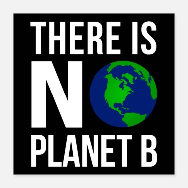B Day There Is No Planeb B - Earth Day | Poster - Poster 16x16