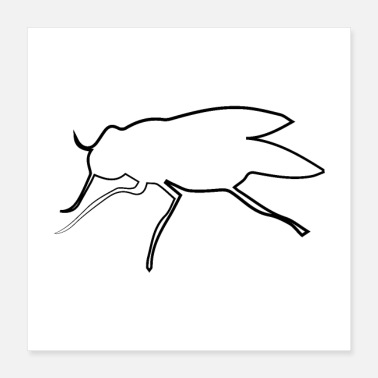 Bug Fly - Poster 16x16