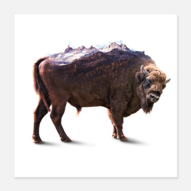 Weather Bisons rock - Poster 16x16