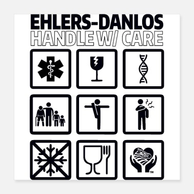 Zebra EDS AWARENESS – Handle With Care - Poster 16x16