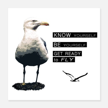 Philosophy Seagull - Philosophy of LIFE - Poster 16x16