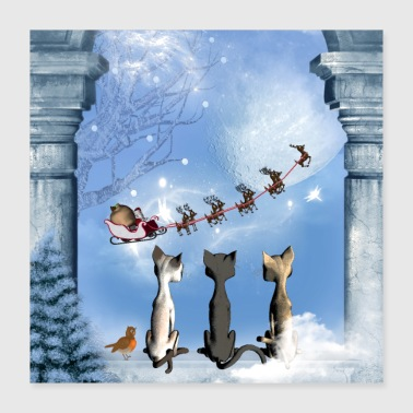 Christmas, cute cats looking in the sky - Poster 16x16