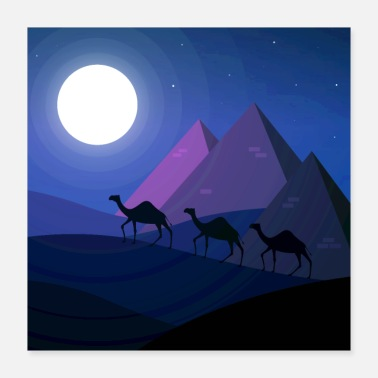Egypt Camels in Egypt - Poster 16x16