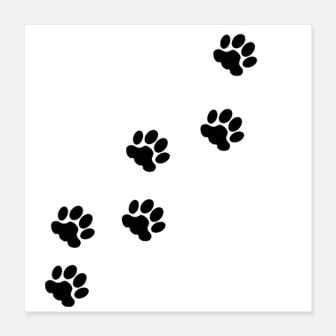 Paw Cat tracks, animal tracks, paw, cat paw, step - Poster 16x16