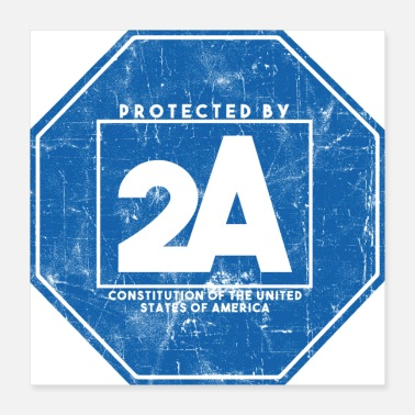 2nd Amendment Protected By 2A - Poster