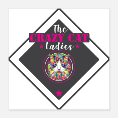 Lady Crazy Cat Ladies Gift Crazy Cat Lady - Poster 16x16