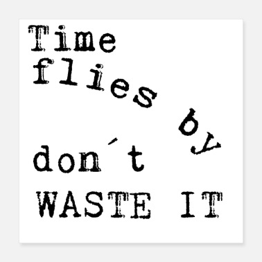 Attitude Time flies by don´t waste it - Poster