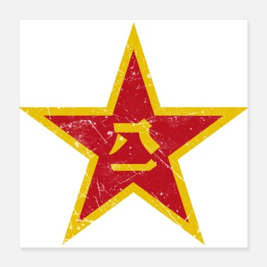 China Chinese Air Force Roundel - Poster 16x16