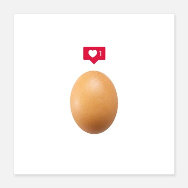 Social World Record Insta Egg - Poster 16x16