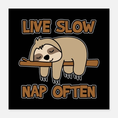 Nap Sloth Live Slow Nap Often Funny Gift - Poster 16x16