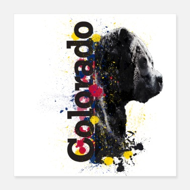 Colorful Colorado Colorado Pride - Poster 16x16