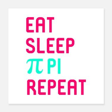 Sense Eat Sleep Pi Math Science Quote - Poster 16x16