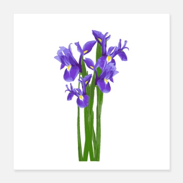 Spring Break Flower Spring Iris - Gift Idea - Poster