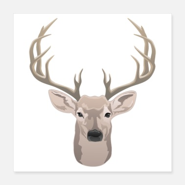Antler Beautiful buck with big antlers - Poster