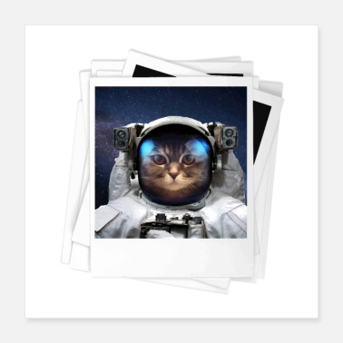 Proof Space Cat Photo - Poster 16x16
