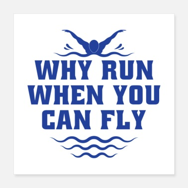 Freestyle Why Run When You Can Fly II Gift - Poster 16x16