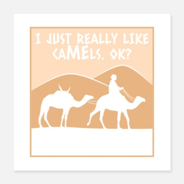 Tourism I Just Really Like Camels Ok Gift - Poster 16x16