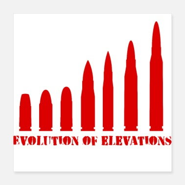 The Bigger It darwin evolution of elevations - Poster 16x16