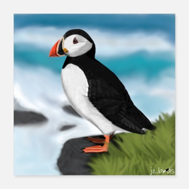 Ornithologist jz.birds Puffin Bird Illustration Design - Poster