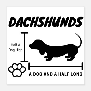 Dachshunds Half A Dog High, A Dog And A Half Long - Poster 16x16