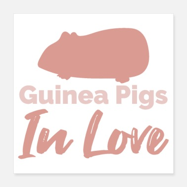 Pig Lover Guinea Pig Guinea Pigs in Love Funny Gift Idea - Poster