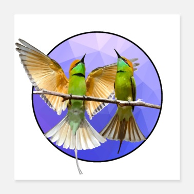 Bird Watching Colorful birds - Poster