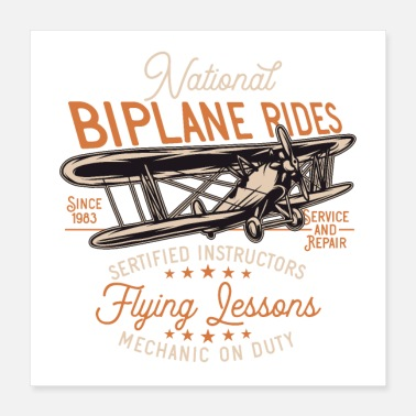 Graphic Art Plane graphic - Poster