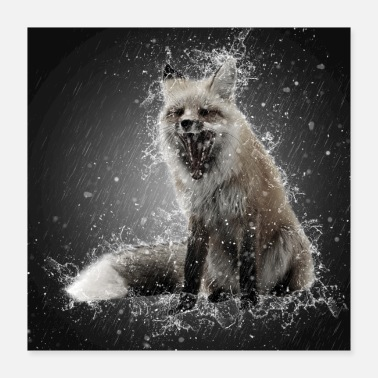 Red Fox in Rain - Poster