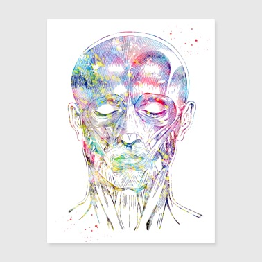 Face muscles,Watercolor Print, Medical Art, Scien - Poster 18x24