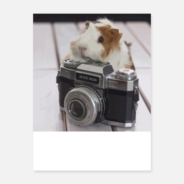 Most Popular Selling Guinea photographer - Poster