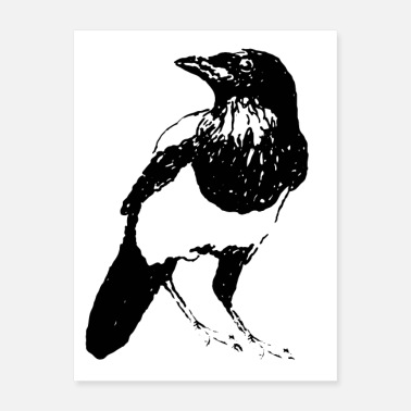 Cuba Magpie Gangster Bird of the Year * Jack Joblin - Poster