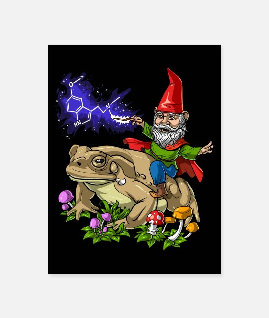 Trippy Posters - Psychedelic Gnome DMT Trip - Poster white