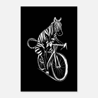 Cycling Cycling Zebra Bicycle Cyclist Gift Zebras - Poster