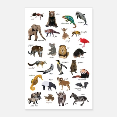 Alphabet Animal ABC Poster - Poster