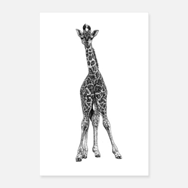 Foal Baby giraffe - ink illustration - Poster