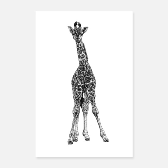 Animal Posters - Baby giraffe - ink illustration - Posters white