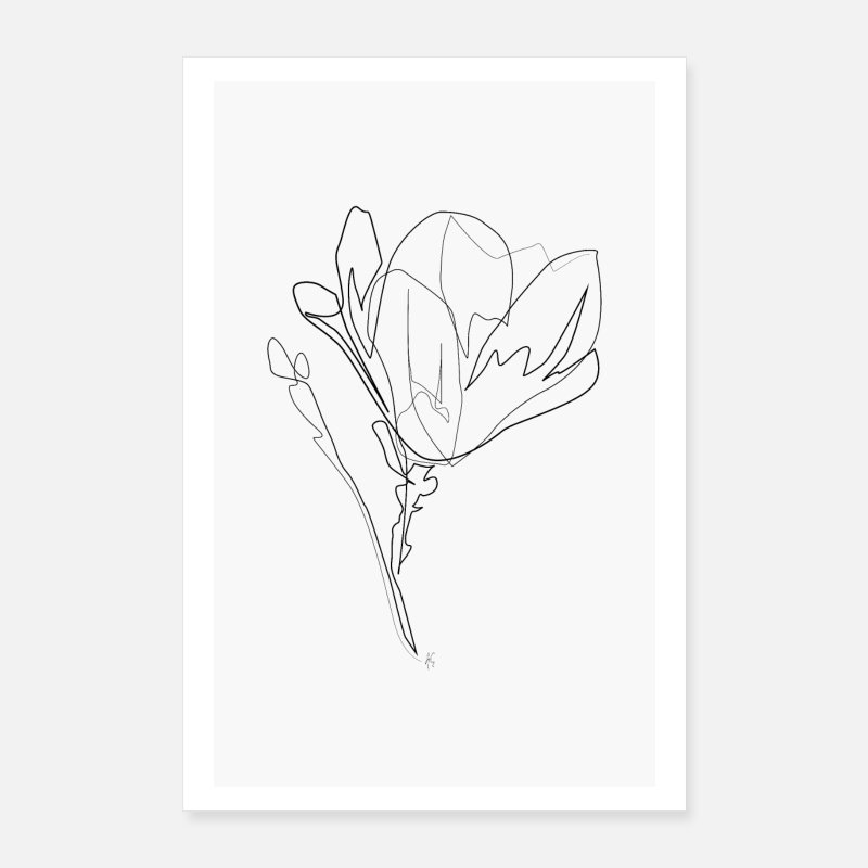 Black And White Posters - Magnolia Flower - Posters white