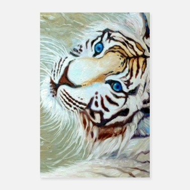 Silver blue eyed white tiger on silver - Poster 24x36