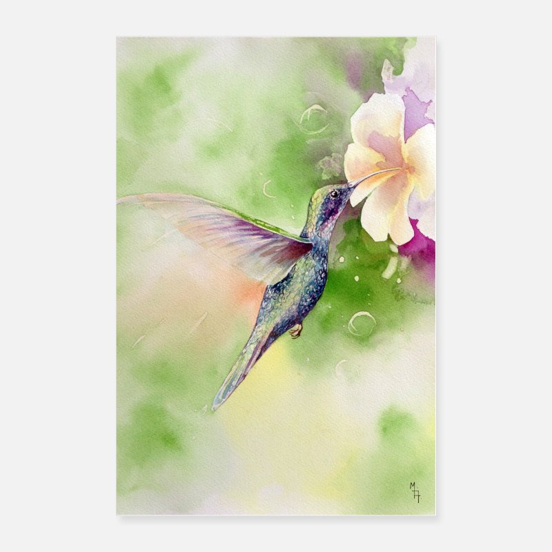 Spring Posters - Hummingbird - Posters white