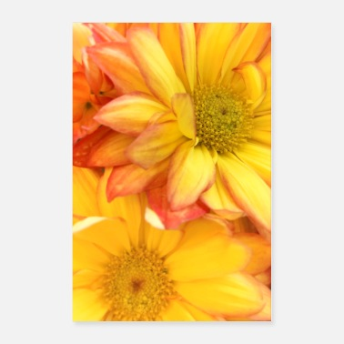 Bright Bloom - Poster 24x36