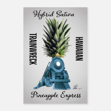 Cheeba Pineapple Express Cannabis Wall Poster - Poster