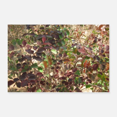 Beautiful Beautiful Leaves - Poster 36x24