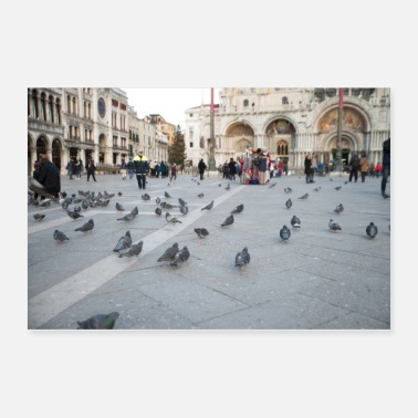 Mark Venice pigeons - Poster