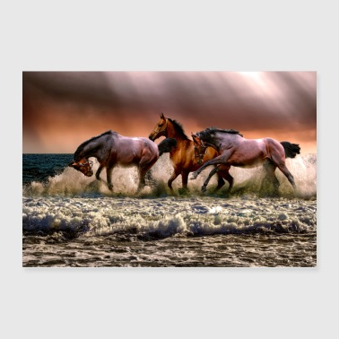Horse - Poster 36x24