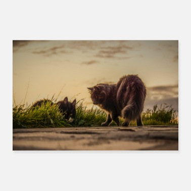Nature Cats - Poster