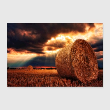 Farmers Dreams - Poster 36x24